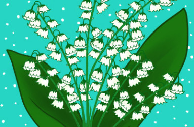 Lily of the Valley - illustration by Maddy Beaupré. mcbeaupre.com